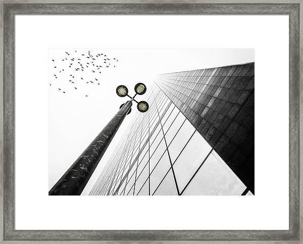 Straight To The Sky Framed Print
