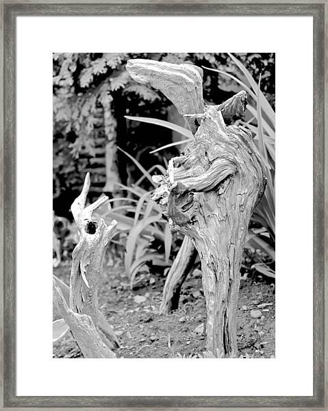 Strange Conversants Framed Print