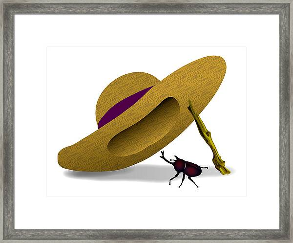 Straw Hat And Horn Beetle Framed Print