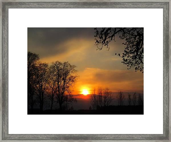 Striking Beauty Framed Print