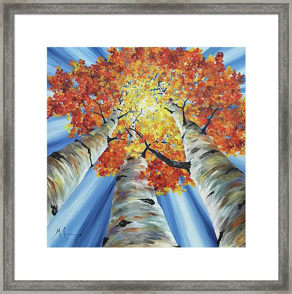Striking Fall Framed Print