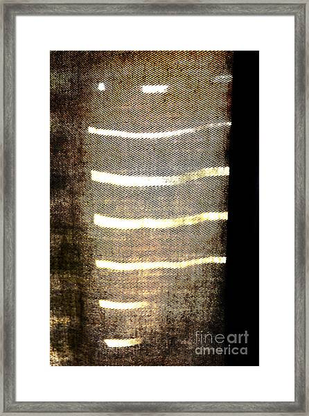 Stripes And Texture Framed Print