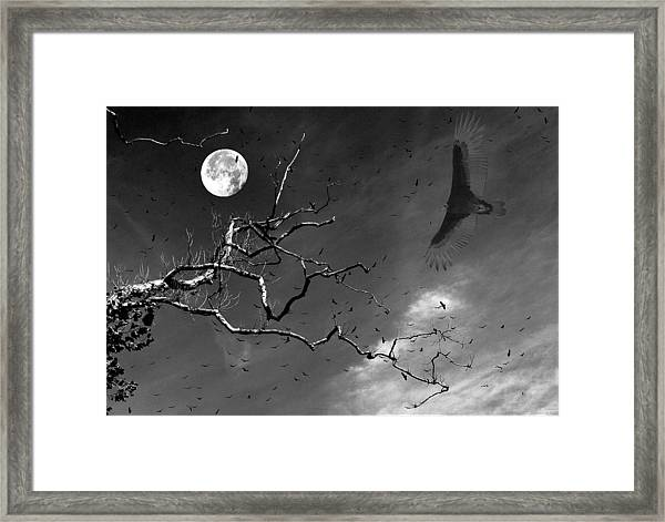 Stroke Of Midnight Framed Print