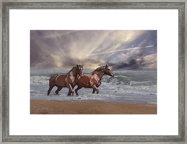 Strolling On The Beach Framed Print