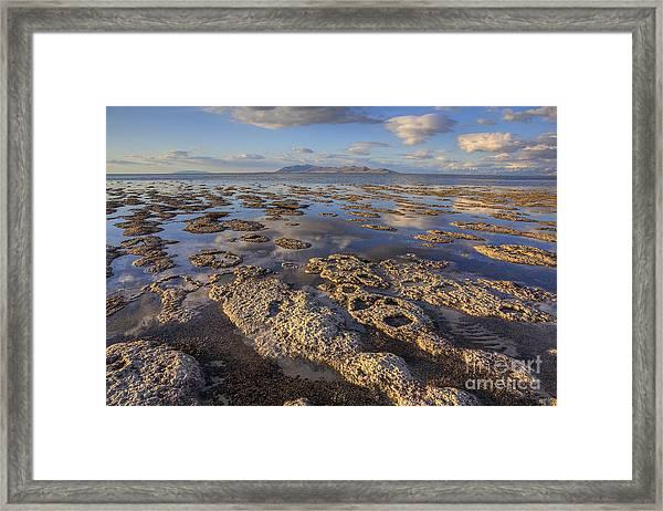 Stromatolites And Antelope Island Framed Print
