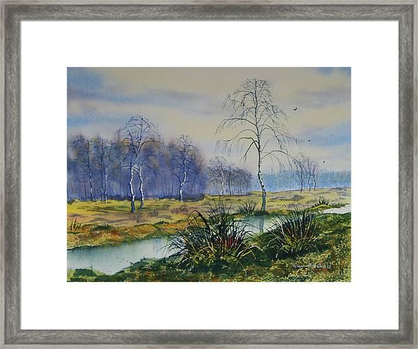 Stream In Flood On Strensall Common Framed Print