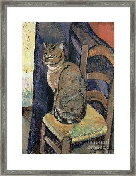Study Of A Cat Framed Print