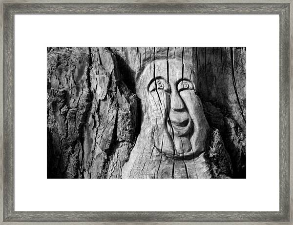Stump Face 3 Framed Print