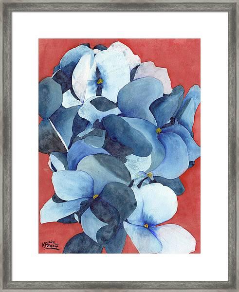 Stylized Hydrangea Framed Print