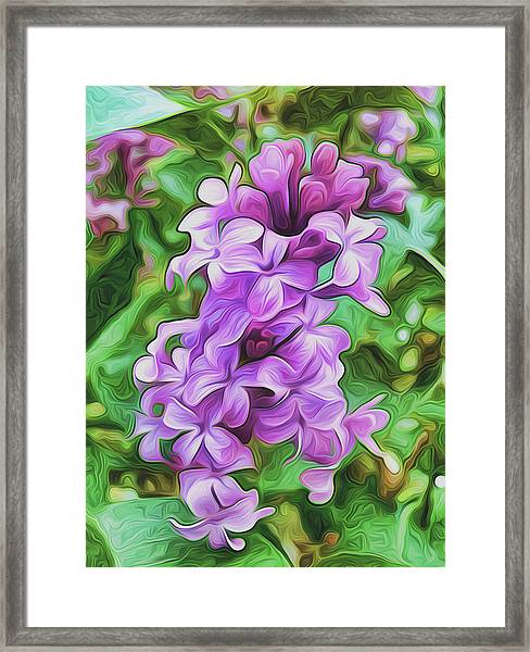 Stylized Spring Lilac By Frank Lee Hawkins Framed Print