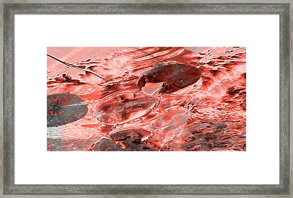 Submerge Framed Print by Affini Woodley