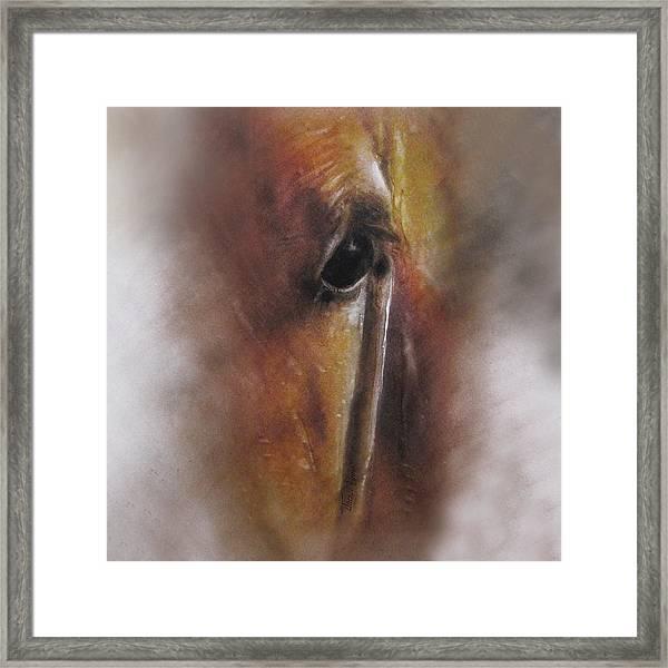 Subtle Horse Framed Print