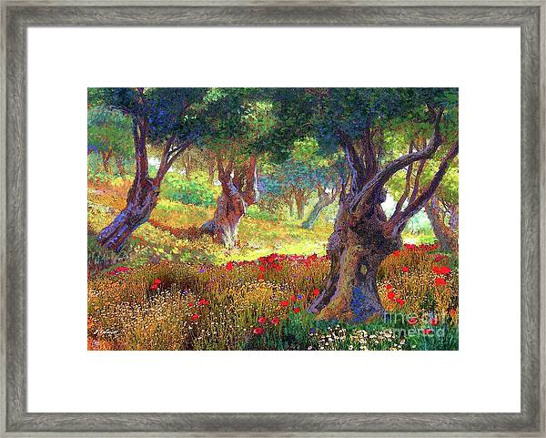 Tranquil Grove Of Poppies And Olive Trees Framed Print