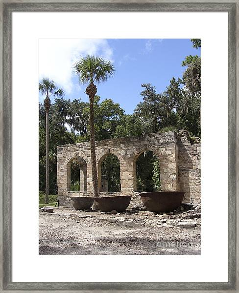 Sugar Mill 3 Bowls 1 Tree  Framed Print