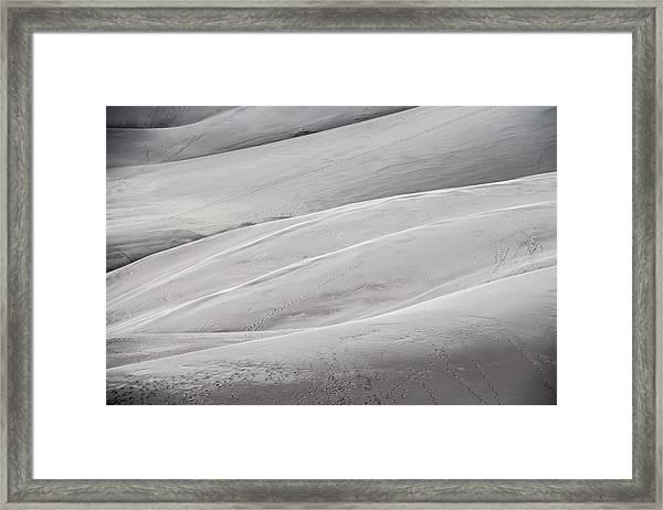 Sullied Framed Print