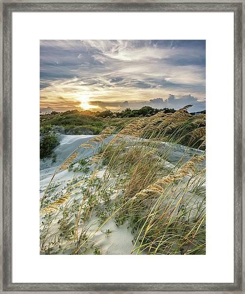 Sullivan's Island Dunes Framed Print