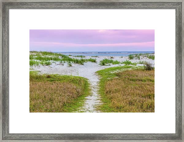 Sullivan's Island Natural Beauty Framed Print