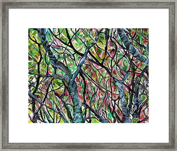 Sumac Stained Glass Framed Print