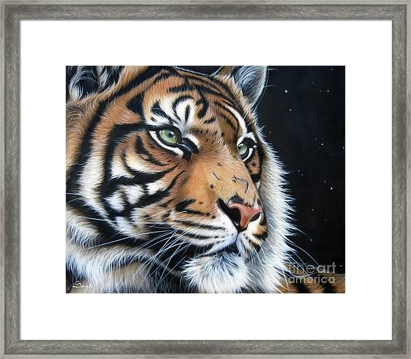 Sumatran  Framed Print