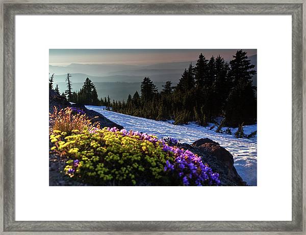 Summer And Winter Framed Print