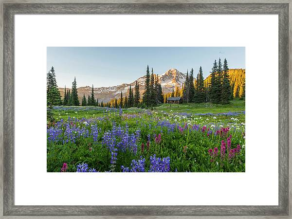 Summer Beauty At Indian Henry's Hunting Ground Framed Print