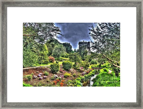 Summer Blarney Garden Framed Print
