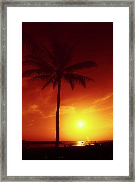 Summer By The Sea Framed Print