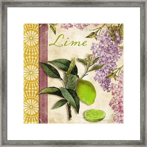 Summer Citrus Lime Framed Print