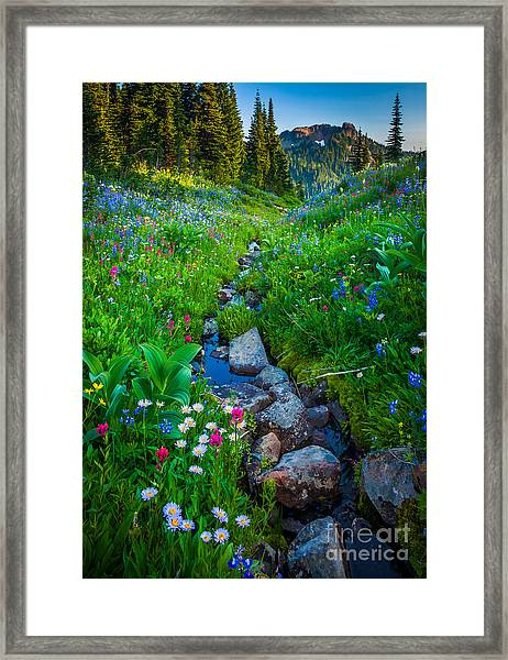 Summer Creek Framed Print