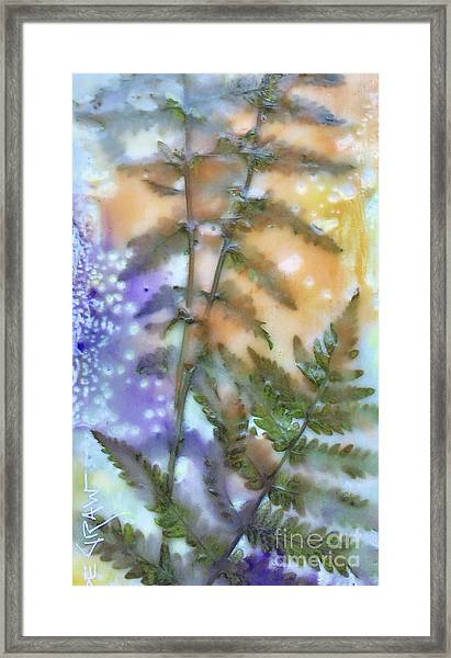 Summer Ferns Framed Print