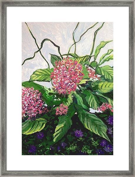Summer Flowers 2 Framed Print