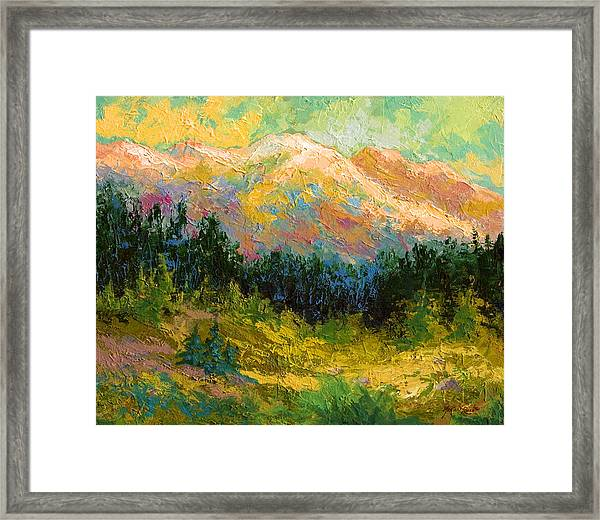 Summer High Country Framed Print