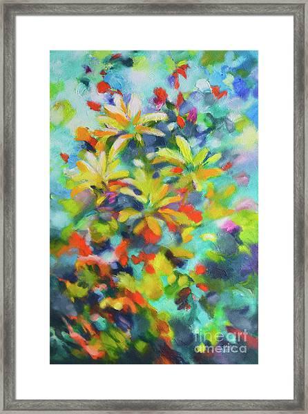 Summer Sweetness Framed Print