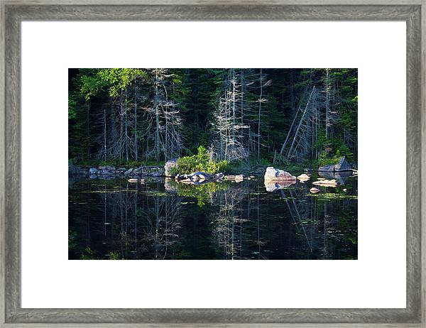 Summertime Reflections On The Lake Framed Print