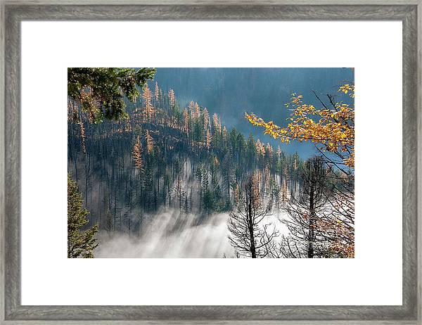 Sun And Mist Framed Print