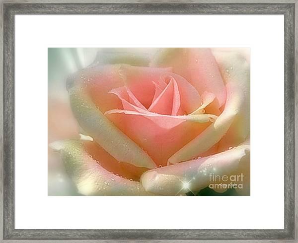 Sun Blush Framed Print