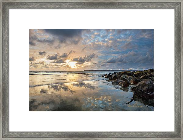 Sun Drenched Framed Print
