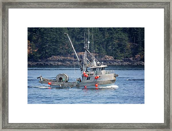 Framed Print featuring the photograph Sun Fisher Off Campbell River by Randy Hall