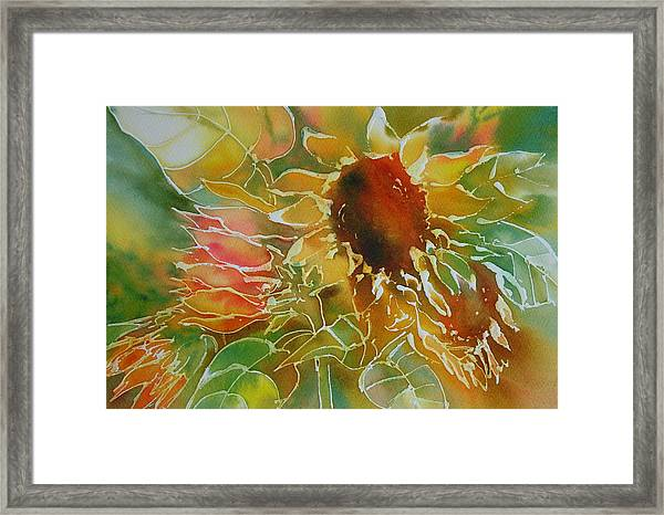Sun Fun Framed Print