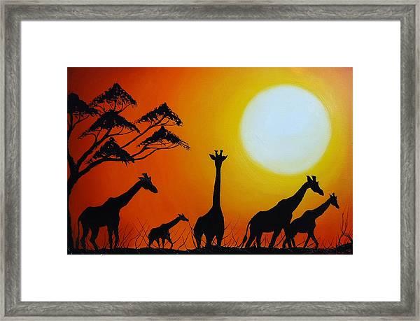 Sun Of The Giraffe 12 Framed Print by Dunbar's Modern Art