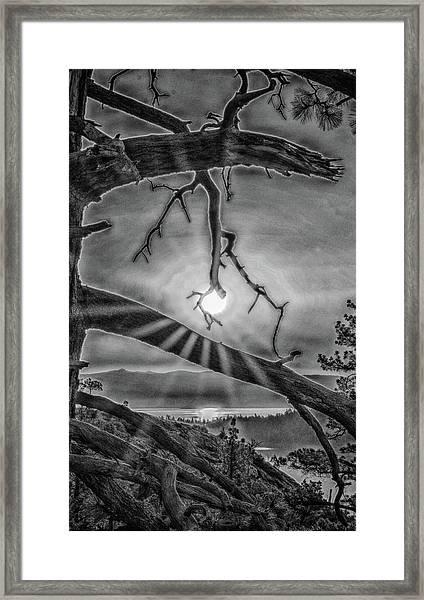 Sun Ornament - Black And White Framed Print