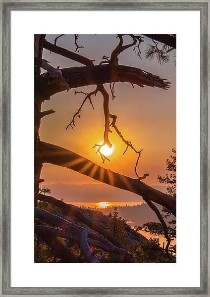 Sun Ornament - Cropped Framed Print