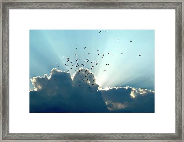 Sun Ray Aerobatics Blue Sky Framed Print