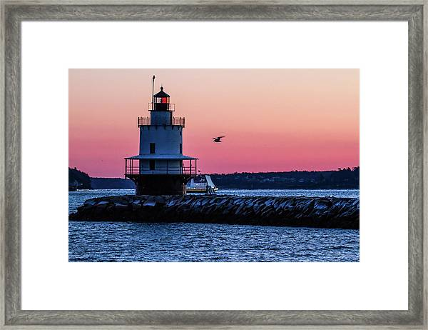 Sun Rise At Spring Point Framed Print