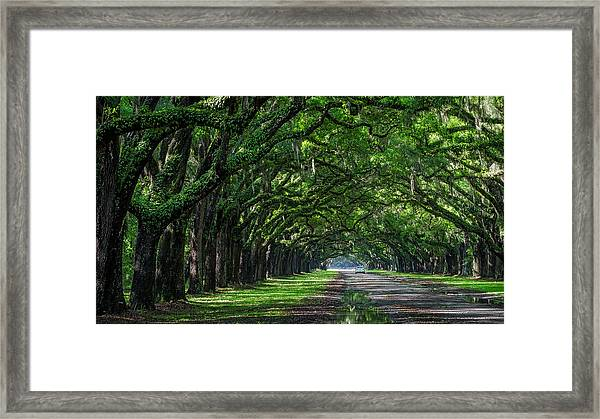Sunday Drive Framed Print by Michael Donahue