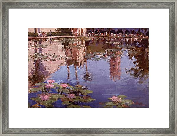 Sunday Reflections - Water Lilies Framed Print