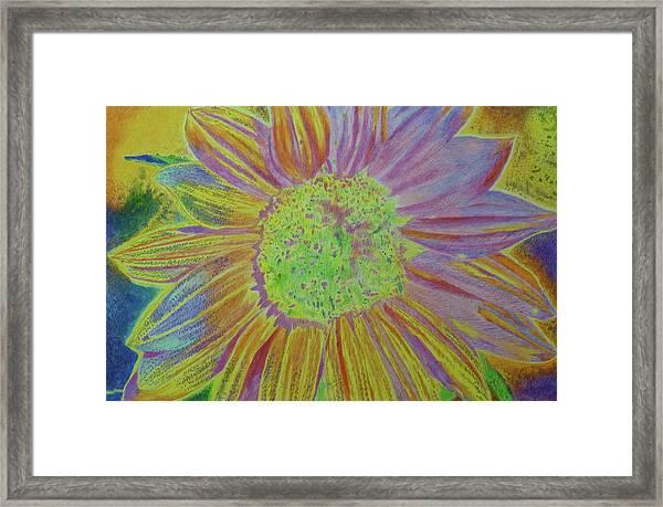 Sundelicious Framed Print