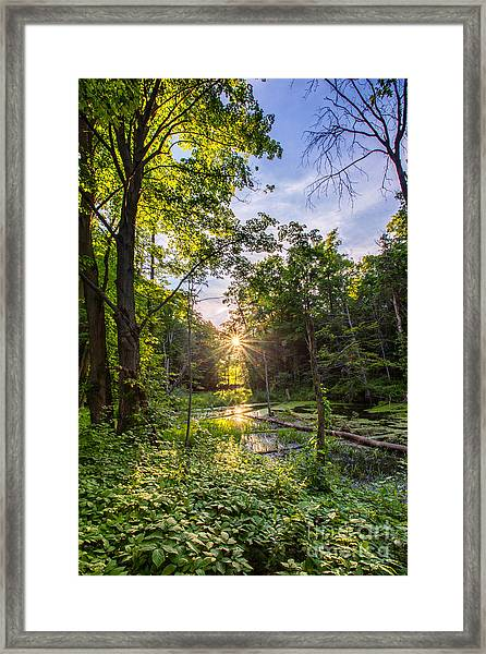Sundown At Creekside Framed Print