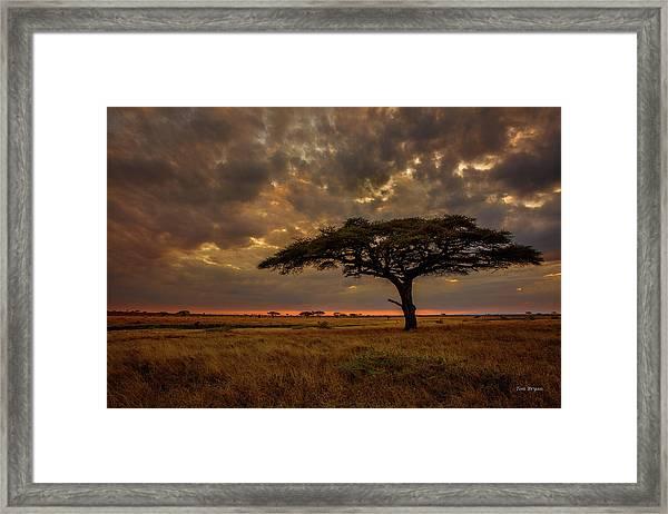 Sundown, Namiri Plains Framed Print
