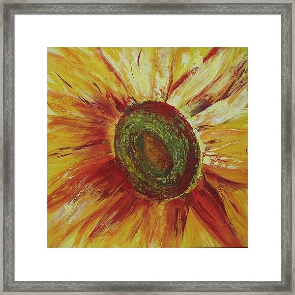 Sunflower Framed Print by Aneta  Berghane